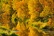Autumn along the Seine River<br />Ste Anne<br />Manitoba<br />Canada