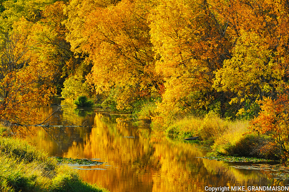 Autumn along the Seine River<br />