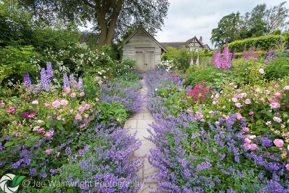 A path through the Rose Garden at Wollerton Old Hall Garden, Shropshire.