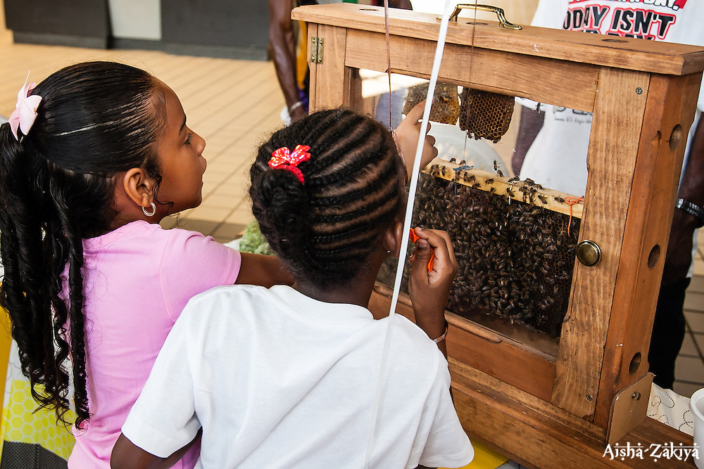 "Allura Alvalle, 5, and Je'Synia Lloyd, 7, take an interest in the observation bee hive.  The VI Department of Agriculture hosts the second annual Fresh Beekeeping ""Buzzaar on St. Thomas.  The event which provided education and outreach featured an observation bee hive, and byproducts of hive production including soaps, balms, wines, candles, and beekeeping supplies.  Tutu Park Mall.  22 September 2012.  © Aisha-Zakiya Boyd"