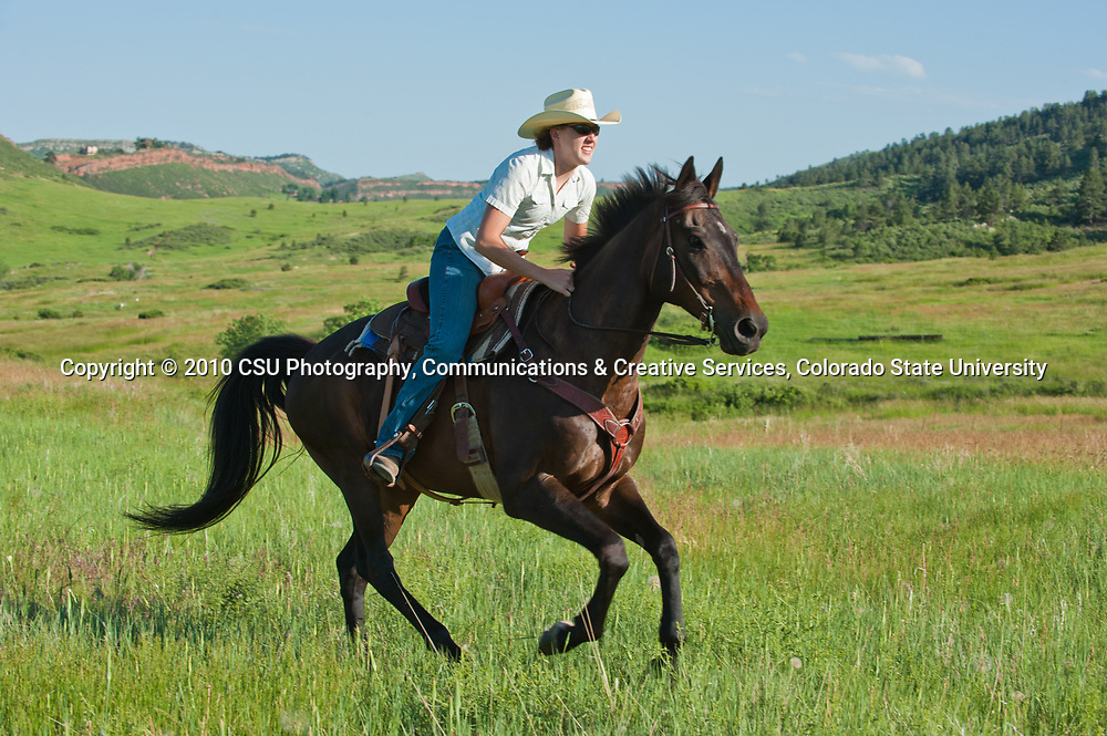 Members of the Colorado State University Mountain Riders Horse Club ride in Lory State Park.