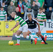 Celtic&rsquo;s Scott Brown and Dundee&rsquo;s Mark O&rsquo;Hara - Dundee v Celtic in the Ladbrokes Scottish Premiership at Dens Park, Dundee. Photo: David Young<br /> <br />  - &copy; David Young - www.davidyoungphoto.co.uk - email: davidyoungphoto@gmail.com