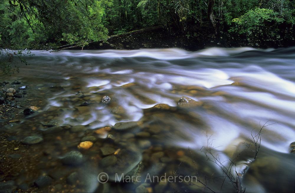 Franklin River, Franklin Gordon Wild Rivers National Park, Tasmania