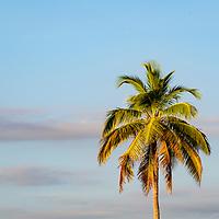 Biscayne National Park, Florida, United States