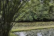 LUNUGANGA was the country home and garden of architect Geoffrey Bawa.<br /> <br /> Bentota, Sri Lanka