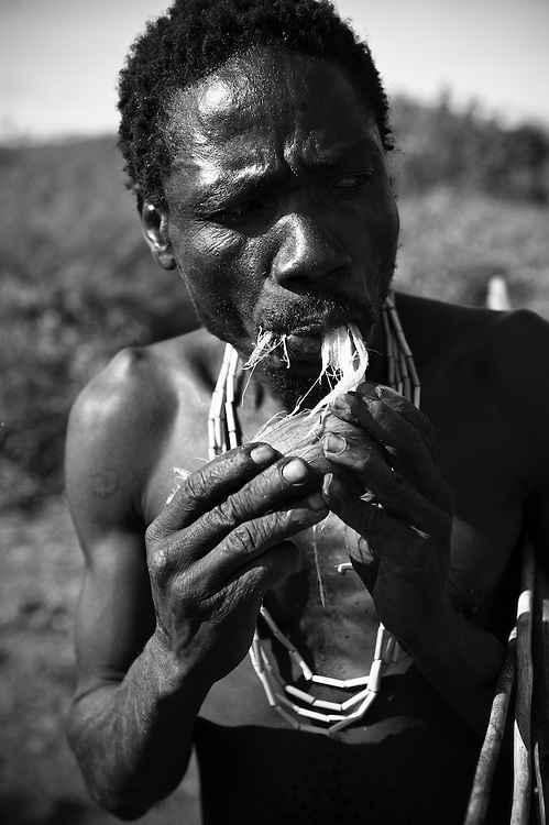 The Hadzabe, or Hadza, are one of the last tribes of hunter-gatherers in the world.  They live around Lake Eyasi and the Serengeti Plateau and today, number 1000-2000, although just 300-400 still live a traditional lifestyle. They were once thought to be related to the San of southern Africa, but modern genetic studies link them to the pygmies of west and central Africa...The Hadzabe are superb opportunistic hunter-gatherers.  They hunt animals, and collect honey, fruit, tubers and berries for food.  They also use a wide variety of plant species for medicinal purposes...The future of the Hadzabe is very uncertain.  Their existence is threatened by land encroachment by farmers and herders, lack of game to hunt, diseases including TB and HIV/AIDS and substance abuse.