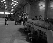 New Bottling plant for D.E.Williams..1975..19.06.1975..06.19.1975..19th June 1975..The Minister for Justice, Mr Patrick Cooney TD, officially opened the new one and a half million gallon per annum soft drink facility at Tullamore,Co Offaly. The new plant represents an investment of over a quarter million pounds by the Williams Group. It is hoped that this investment will create further employment for the area...Image of The Minister Mr Cooney being given a tour of the facility.