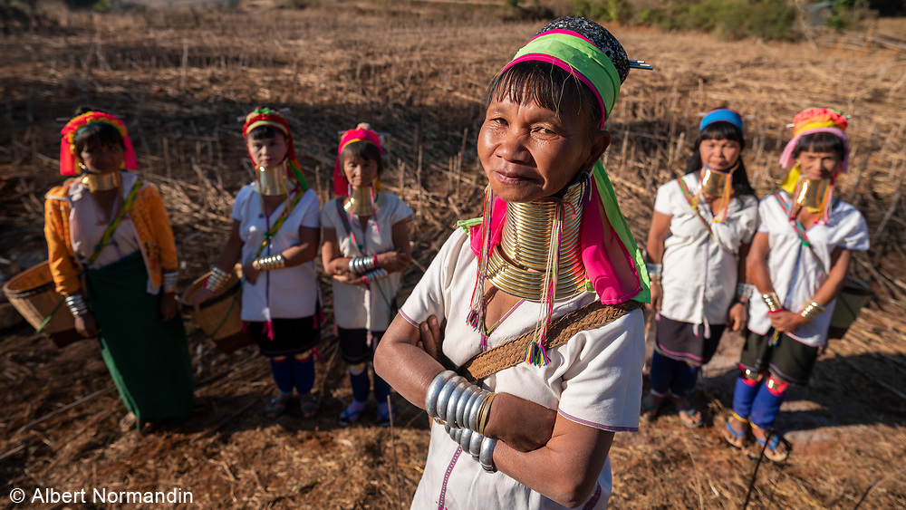Long Neck Ring Ladies, Padaung tribe ethnic group, Pan Pat village, Loikaw, Myanmar
