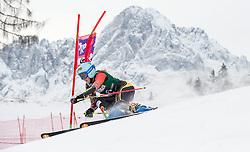 28.12.2013, Hochstein, Lienz, AUT, FIS Weltcup Ski Alpin, Lienz, Riesentorlauf, Damen, 1. Durchgang, im Bild Marie-Michele Gagnon (CAN) // during the 1st run of ladies giant slalom Lienz FIS Ski Alpine World Cup at Hochstein in Lienz, Austria on 2013-12-28, EXPA Pictures © 2013 PhotoCredit: EXPA/ Michael Gruber