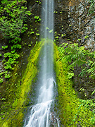 A waterfall on an overcast day at the Staircase unit of Olympic National Park, Washington, USA.