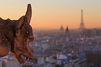 Looking out over the city of Paris, France from the roof of Notre Dame Cathedral with a gargoyle in the foreground, the Eiffel Tower and Les Invalides in the distance.