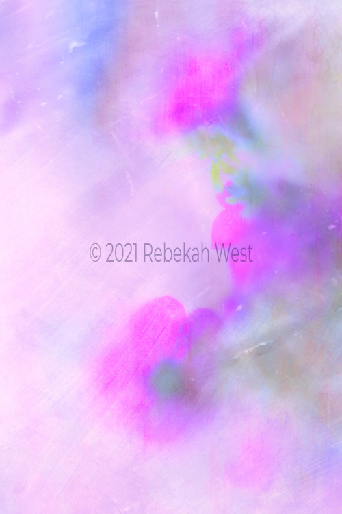 Three foggy fuschia petunias start down center second centered on right side third opens up left, vertical background mainly a soft millenial pink with a dash of blue, soft greens, pinks, purples, iridescent, flower art, feminine, high resolution, licensing, 3744 x 5616