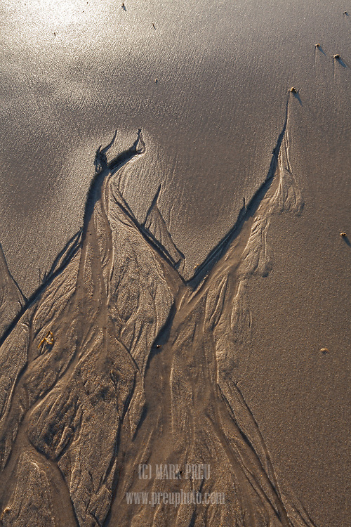Water seeping out of the sand as the tide retreats carves interesting patterns on Nauset Beach