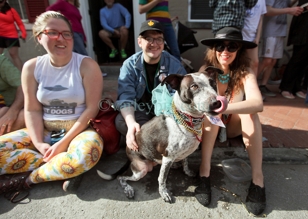 31 January 2016. New Orleans, Louisiana.<br /> Mardi Gras Dog Parade. Bystanders and their dog look on as the parade winds its way around the French Quarter with dogs and their owners dressed up for this year's theme, 'From the Doghouse to the Whitehouse.' <br /> Photo©; Charlie Varley/varleypix.com
