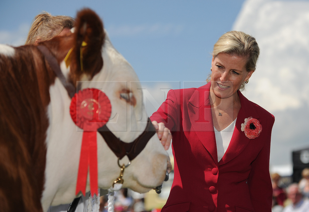 © Licensed to London News Pictures. <br /> 08/07/2014. <br /> <br /> Harrogate, United Kingdom<br /> <br /> Today saw the first day of the Great Yorkshire Show and HRH The Countess of Wessex paid a visit to the show and visited a number of stands. <br /> The show is England's Premier Agricultural Event and is based on the 250-acre Great Yorkshire Showground near Harrogate. The Main Ring is the hub of the Show providing a setting for international show jumping and world class cattle parade. The showground is filled with animals, country demonstrations, have-a-go activities and rural crafts.<br /> <br /> Photo credit : Ian Forsyth/LNP