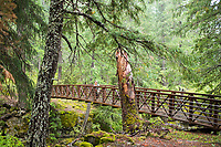 Natural Bridges. Rogue River in southern Oregon.