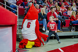 NORMAL, IL - February 05: Reggie Redbird finds a young friend during a college basketball game between the ISU Redbirds and the Valparaiso Crusaders on February 05 2019 at Redbird Arena in Normal, IL. (Photo by Alan Look)