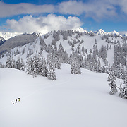 A group of skinners in the Mount Baker backcountry of Washington's Cascade Mountains.