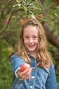Little girl gives an apple while picking at Kelly's Orchard, Buhl, Idaho. MR
