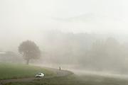 Straße und Landschaft im Nebel, Bayerischer Wald, Bayern, Deutschland | Street and Landscape in the Mist, Bavarian Forest, Bavaria, Germany