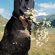 'Morchili' Mariami picking wildflowers to decorate the chapel at the small abbey where she lives in the village of Abano in the Truso Valley, near the border with occupied territory of South Ossetia in the Mtskheta-Mtianeti region of Georgia. The entire valley is all but abandoned, and for most of the year is home only to a lone homesteader, a monk, and four nuns and a priest who live in the abbey.