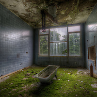 An abandoned Soviet sports hospital in East Germany with bathtub in room with grass growing on floor