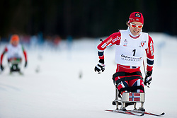 MARTHINSEN Mariann, NOR at the 2014 IPC Nordic Skiing World Cup Finals - Sprint