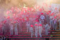 Supporters Evian Thonon  - 09.05.2015 -  Evian Thonon / Reims  - 36eme journee de Ligue 1<br />Photo : Jean Paul Thomas / Icon Sport