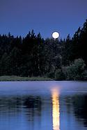 Moonset at dawn over forest trees at Manzanita Lake, Lassen Volcanic National Park, California