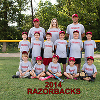 6-24-14 Razorbacks Parent Pitch 2014