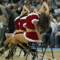 20 December 2008:  during 99-90 win by the New Orleans Hornets over the Sacramento Kings at the New Orleans Arena in New Orleans, LA. .