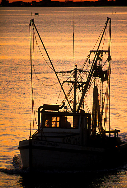 Stock photo of a shrimp boat returning to port.