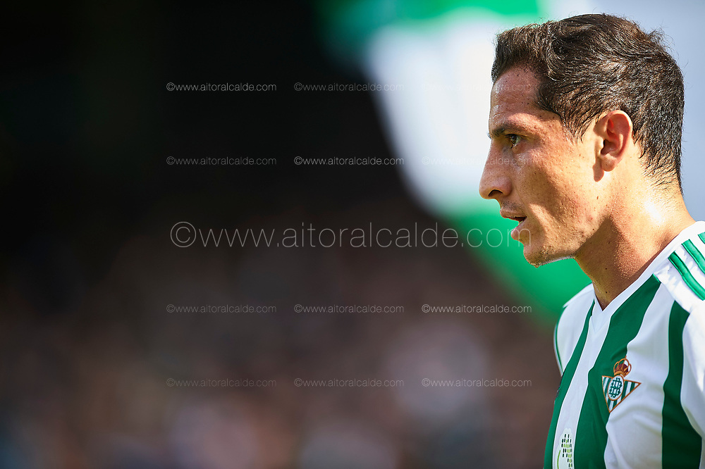 SEVILLE, SPAIN - OCTOBER 21:  Andres Guardado of Real Betis Balompie looks on during the La Liga match between Real Betis and Alaves at Estadio Benito Villamarin on October 21 in Seville.  (Photo by Aitor Alcalde Colomer/Getty Images)