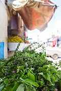 Herbs for traditional Moroccan tea for sale in Essaouira, Southern Morocco