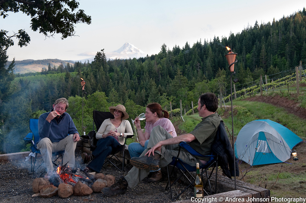 Couples enjoy picnic of local wine and food, Phelps Creek Vineyard, Columbia River Gorge, Oregon