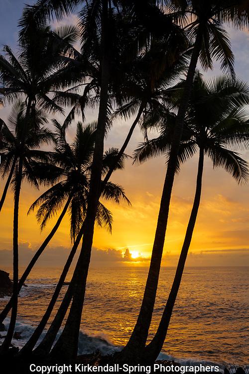 HI00315-00...HAWAI'I - Sunrise along the Kaimu-Kapoho Highway 137 on the Island of Hawai'i.