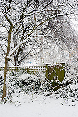 2013-01-21_Snow Sheffield