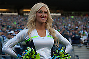 The Seagals perform at Century Link Field during the Seahawks vs Minnesota game. Photos by John Lill
