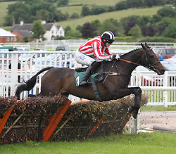 Minellaforleisure ridden by Harry Bannister in action during the 3.00 The bet365 Handicap Hurdle race - Mandatory by-line: Jack Phillips/JMP - 26/06/2016 - HORSE RACING - Uttoxeter Racecourse - Uttoxeter, England - John Smith's Summer Cup