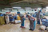 Mongolie. Oulaan Bator. Usine de cachemire Gobi. // Mongolia. Ulaan Bator. Gobi cachemere factory.