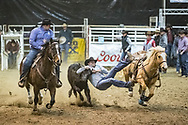 Steer wrestler Ace Berry makes his run during slack at the Bismarck Rodeo on Saturday, Feb. 3, 2018. This photo and more from most runs are available at Bobwire-S.com.