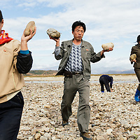 Members of a local community in DPRK work on a flood mitigation project to reinforce the local riverbank.  Over a two month period, the community will construct five groins from rocks and cement which are designed to redirect the flow of the river during the rainy season and prevent the river from bursting its banks and flooding the surrounding rice fields. The project is supported by IFRC and the Finnish Red Cross with funding from ECHO. <br /> Bulgunbyol ri, Hamju County, South Hamgyong Province