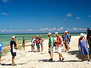 Tourists on the on the beach, Lady Musgrave Island, QLD, Australia