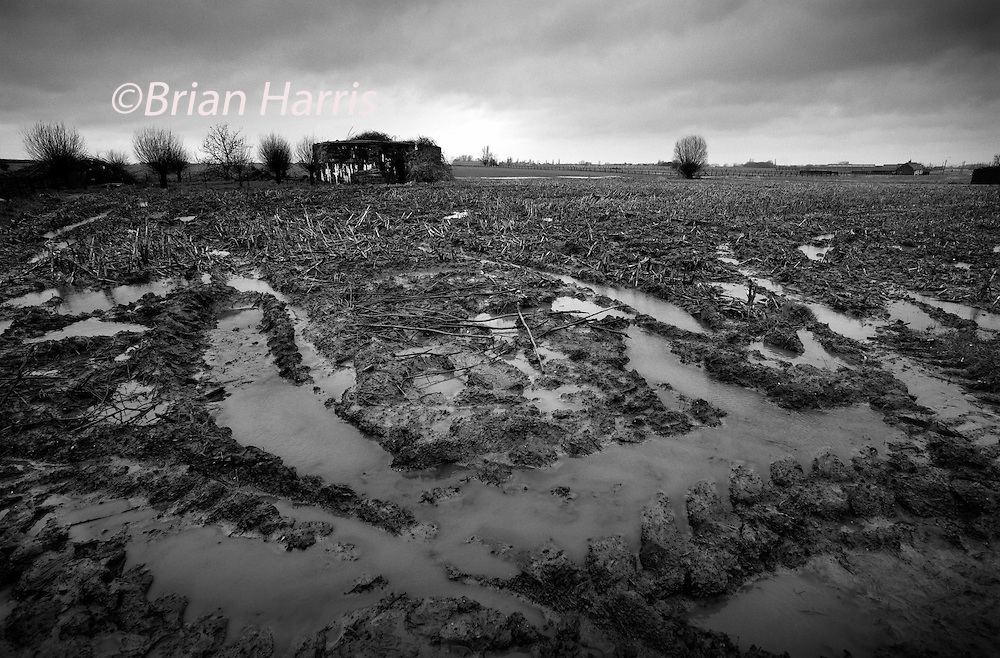 Ypres-Ieper WW1 Battlefield, 1914-1918, Belgium. German Pillbox near Langemark on the Pilkem Ridge. February 2014<br /> Mud and rain and a German Pillbox with entrance way near Langemark on the Pilkem Ridge area of the Ypres Salient.