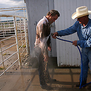 Farm hand Mike Moyle gets a washing down from Alan Katko following a muddy cattle roundup at the Bar B ranch near Albia, Iowa.   A morning rain turned the ranch into a quagmire, making the  task of branding and vaccinating the cattle more difficult.  Ranch owner Catherine Bay runs the operation with a herd of over 2,000 cattle.