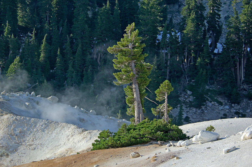 Bumpass Hell, Lassen Volcanic National Park, California, United States of America