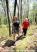 People, Men Hiking on Forest Trail, Cumberland Co., PA