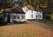 Autumn leaves and trees with whitewashed country cottages, Westleton, Suffolk, England