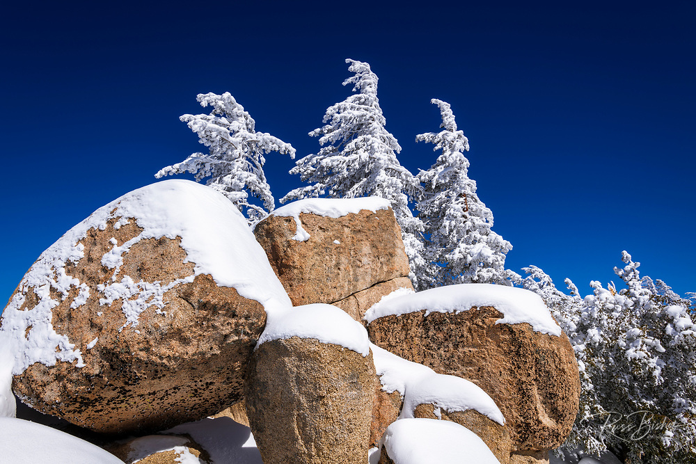 Snow covered pines and boulders in the San Bernardino Mountains, San Bernardino National Forest, California USA