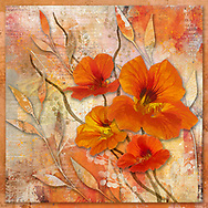 Cheerful orange nasturtium blossoms on a textured warm beige and orange background with stylized leaves and branches